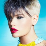 Funky Short Hairstyles , 5 Funky Short Hairstyles For Women In Hair Style Category