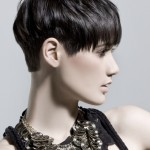 Popular Short Funky Hairstyles , 5 Funky Short Hairstyles For Women In Hair Style Category