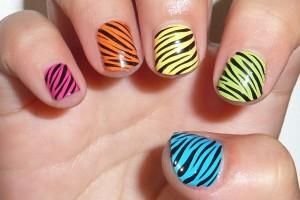 Nail , 6 Zebra Nail Designs : Rainbow Zebra nail Print