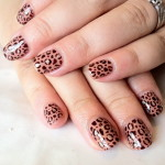 Shellac Iced Cappuccino Leopard Print Nail Designs Ideas , Shellac Nail Design Ideas In Nail Category