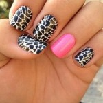 Unique Zebra Nail Designs Ideas , 6 Zebra Nail Designs In Nail Category