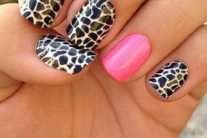 Nail , 6 Zebra Nail Designs : Unique Zebra Nail Designs Ideas
