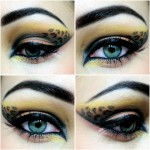 cheetah eyes Makeup Geek , 7 Cheetah Inspired Eye Makeup In Make Up Category