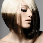 hair color ideas , 6 Hair Colouring Style In Hair Style Category
