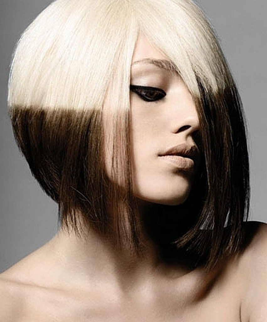 6 Hair Colouring Style in Hair Style