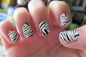 Nail , 6 Zebra Nail Designs : zebra Nail Polish Designs