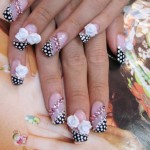 Best Acrylic Nail Designs , 6 Artificial Nail Designs In Nail Category