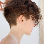 Chic Multi Textured Short Curly Hairstyle , 9 Short Textured Hairstyles Women In Hair Style Category
