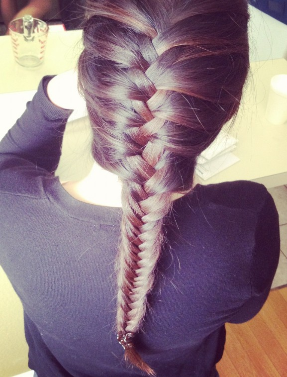 5 Fishtail French Braid in Hair Style