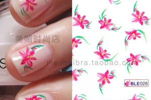 750x750px 6 Pre Designed Nail Tips Picture in Nail