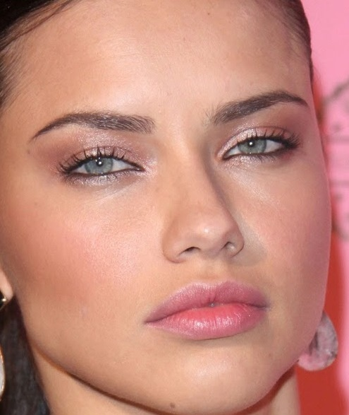 7 Adriana Lima Eye Makeup in Make Up