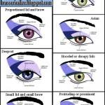 Eye Makeup: Eye Shape Based Eye Makeup Chart , 6 Eye Makeup For Different Eye Shapes In Make Up Category