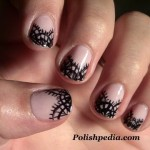 Nail Art Designs | Lace Nail Art , 8 Lace Nail Art Tutorial In Nail Category