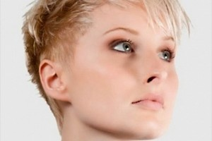 600x664px 6 Very Short Pixie Hairstyles For Women Picture in Hair Style