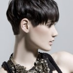 Short Funky Hairstyles , 6 Cool Funky Short Hairstyles In Hair Style Category