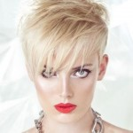 Short Funky Hairstyles for Teenagers , 6 Cool Funky Short Hairstyles In Hair Style Category