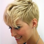 Short Layered Pixie Cut Fine Hair , 6 Beautifu Short Hairstyles For Fine Thin Hair In Hair Style Category