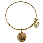 pandora bracelet , 8 Stunning Alex And Ani Charm Necklace In Jewelry Category