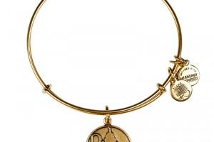 Jewelry , 8 Stunning Alex And Ani Charm Necklace :  pandora bracelet