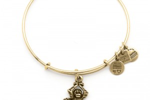 Jewelry , 8 Stunning Alex And Ani Charm Necklace :  pandora jewellery