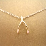 Dogeared Wish Reminder Necklace , 5 Top Dogeared Wishbone Necklace In Jewelry Category