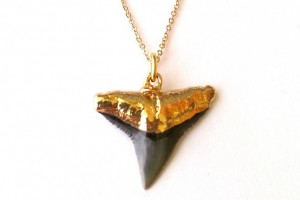 Hair Style , 4 Unique Shark Teeth Necklaces For Sale : Gold Shark Tooth necklace