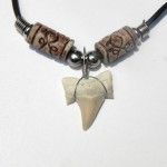 Pretty Sharks Tooth Necklace , 8 Awesome Sharks Tooth Necklace In Jewelry Category