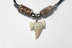 1024x768px 8 Awesome Sharks Tooth Necklace Picture in Jewelry