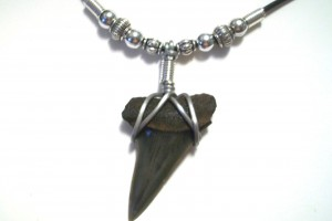 Jewelry , 8 Awesome Sharks Tooth Necklace : Shark Tooth Necklace