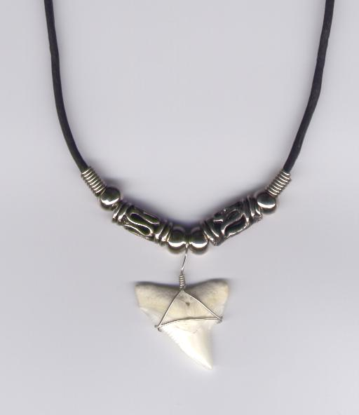 8 Awesome Sharks Tooth Necklace in Jewelry