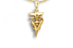 Jewelry , 8 Fabulous Veterinary Caduceus Necklace : Technician Caduceus Pendant