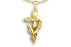 Jewelry , 8 Fabulous Veterinary Caduceus Necklace : Veterinary Caduceus Pendant