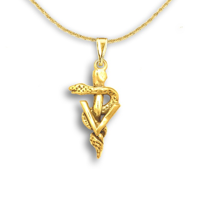 Jewelry , 8 Fabulous Veterinary Caduceus Necklace : Veterinary Caduceus Pendant