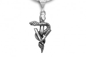 671x671px 8 Fabulous Veterinary Caduceus Necklace Picture in Jewelry