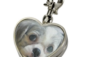 600x600px 8 Unique Pet Urn Necklace Picture in Jewelry
