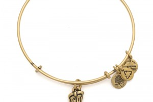 Jewelry , 8 Excellent Alex And Ani Charm Necklaces :  fashion jewelry