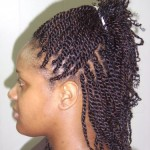 calls african braiding hairstyles , 10 Ideal New African Braiding Hairstyles In Hair Style Category