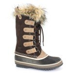 Gorgeous brown  snow boots for kids product Image , Gorgeous Sorel Snow Boots Product Picture In Shoes Category