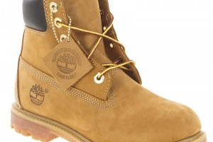 Shoes , Charming  Timberland Womens Shoes Image Gallery : Stunning brown  timberland for women