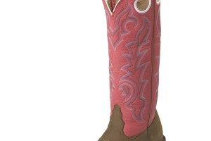 Shoes , Beautiful Tony Lama Womens Boots Product Lineup : Wonderful  tony lama snakeskin boots
