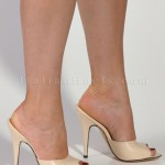 high heel shoes  product Image , Photo Gallery Of High Heel Mules Product Image In Shoes Category