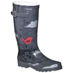short rain boots Product Lineup , Excellent Women\s Rain Boots  Product Image In Shoes Category